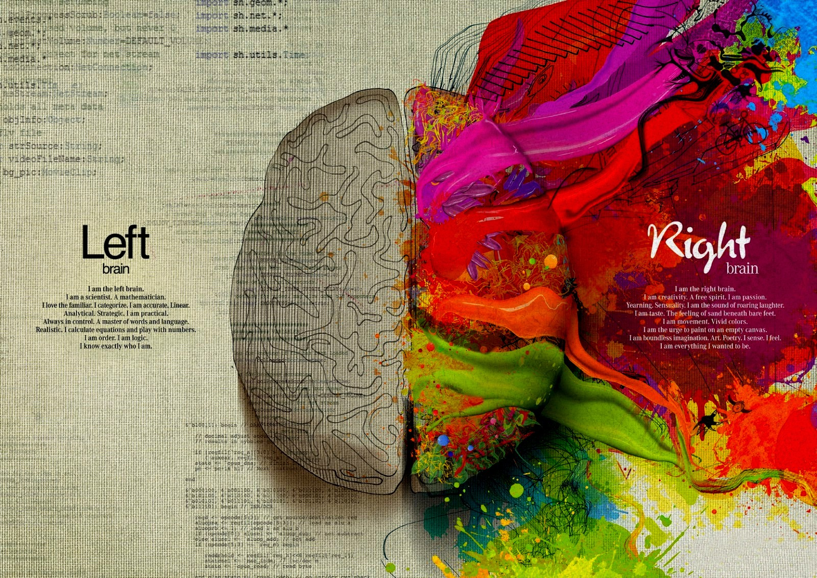 Left_brain_right_brain